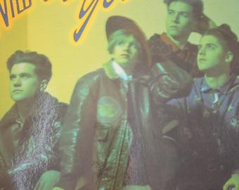 Vintage Record Wild Blue Yonder Self Titled Album RO9003