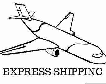 Express Shipping  Worldwide with Courier