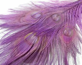 Peacock Feathers, 5 Pieces - LAVENDER Bleached and Dyed Tails Peacock Feathers : 3251