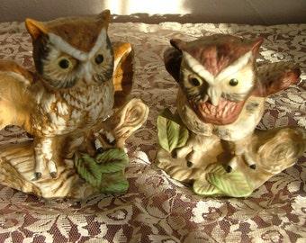Ceramic Owl Statues