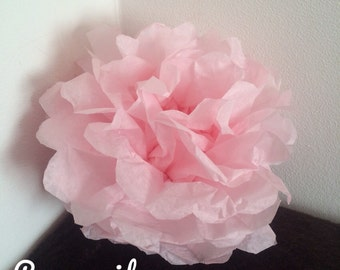 Pack of 2 PomPoms in pale pink tissue paper