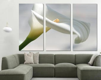 Well known Calla lily art | Etsy IE18