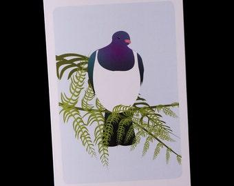 Greeting Card - Kereru - single card
