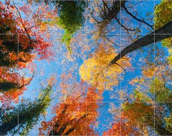 "Painted Trees Ceramic Tile Mural 24"" x 36"" Kitchen Wall Backsplash"