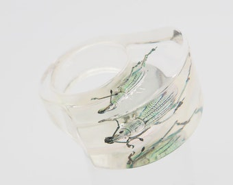 Transparent lucite ring with real beetle