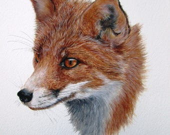 ORIGINAL watercolour painting of a fox by Josephine Bell