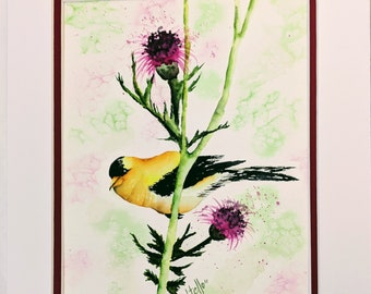 Goldfinch Bird Flower Thistle Watercolor Painting