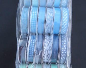 American Crafts Premium Ribbon - Special Delivery Boy -  732480