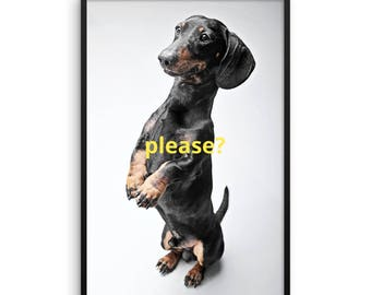 Please? Doxie Framed poster