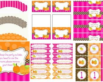 Pink and Orange Birthday Coordinating Items