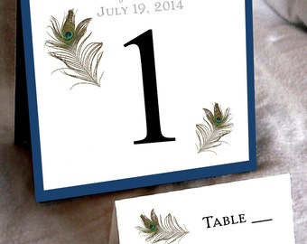 25 Peacock Feathers Wedding Table Numbers and 250 place settings for reception tables