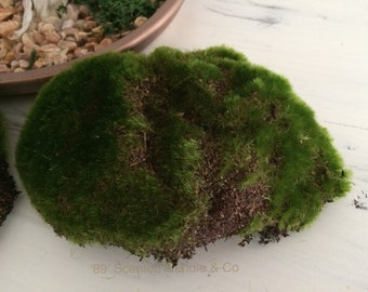 Artificial Fake Moss Rock Fairy Garden Floral Decor Fantasy