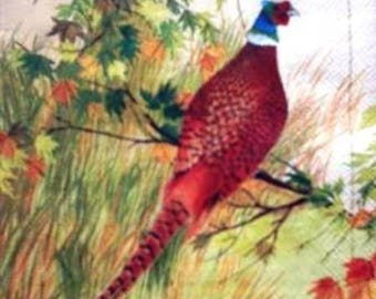 TOWEL in paper beautiful pheasant on a branch #AN099
