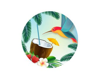 2 tropical coconut Hummingbird glass 14 mm - 14 mm cabochons