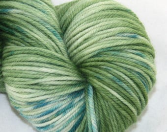 Irish Spring--Fat Cat--SW merino DK