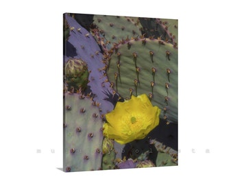 Purple Prickly Pear Cactus Photo, Cactus Art, Cactus Flower, Arizona Cactus, Vertical Art, Photo on Canvas, Picture Gift, Home Decor