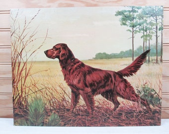 Vintage Irish Setter Dog Print Winde Fine Prints Litho Illustration by Savitt 11x14
