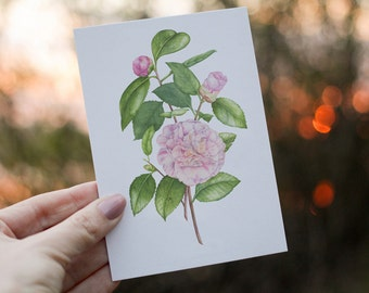 Botanical Post Cards with Envelopes
