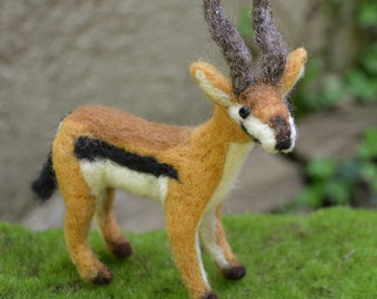 Thomson's Gazelle one of a kind needle felted sculpture