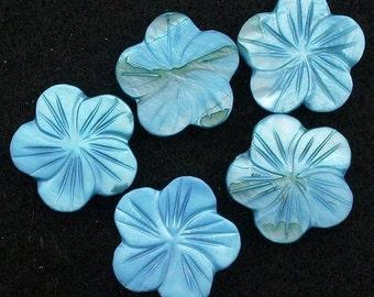 three 20mm carved blue shell flower gem stone gemstone