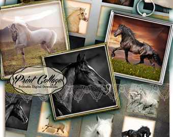 Horse Square Digital Collage Sheet Printable images for pendants magnets 1.5 inch 1 inch 20 mm Scrabble Tile Paper craft c157