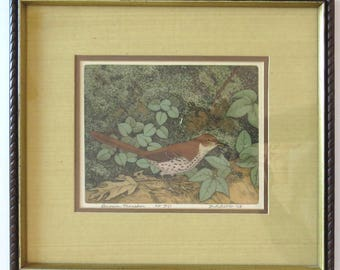 M R BEBB Brown Thrasher 1968 Framed Etching on Satin AP 10/15