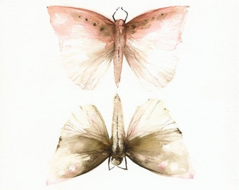 "Pink and Mocha Moths-Print of watercolor -  11 x 17"""