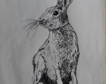 March Hare, ink drawing (digital)