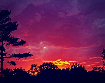 Nature Photography Sunset Photograph clouds trees purple orange pink dark summer home decor wall art vibrant vivid photo fine art print