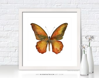 Orange Butterfly Painting, Butterfly Wall Art, Butterfly Print, Original Butterfly Watercolor, Butterfly Greeting Cards, 85 Lydius Butterfly