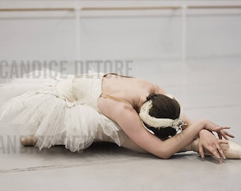 Dance Print - 'The Dying Swan'