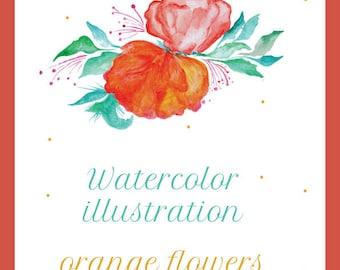 Watercolor illustartion orange flowers