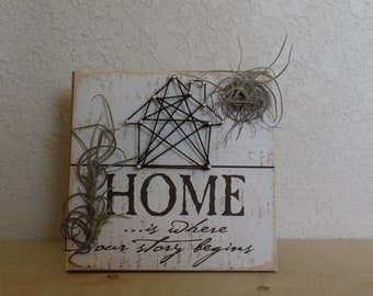 Home is where your journey begins air plant frame