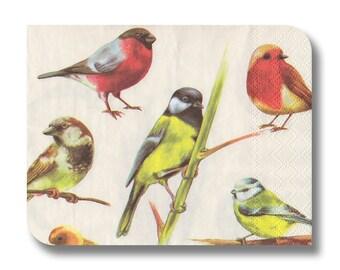 Bird napkin for decoupage x 1 Birds. No 1076