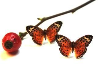 Butterfly earrings, vintage illustration earrings, stud earrings, post earrings, butterflies,