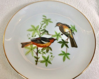 Vintage Chadwick Miller Inc.Baltimore Oriole collectible plate.