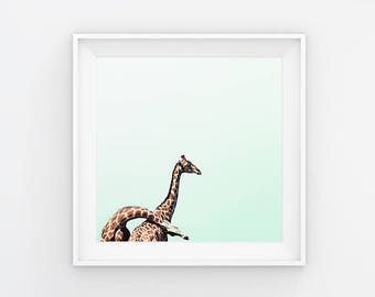 I'll Stand By You VI Giraffes Photography Print