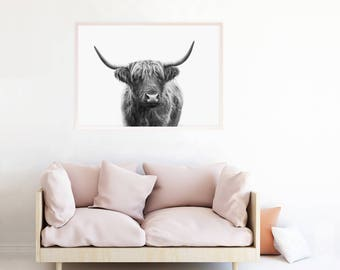 Highland Cow Print, Highland Cow Art, Highland Cow Printable Digital Download Highland Cow Gifts Black and White Photo Poster Picture hc2lbw