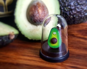 The Pet Avocado, vegan, vegan gift, birthday gift, avocado gift, fathers day gift, miniature avocado, small gift, cute gift, avocado lover