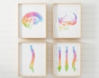 Neurosurgeon Gift - Neurology Gift - Neuroscience Art - Human Anatomy - Anatomy Art - Watercolor Anatomy Art - Spine Art - Brain Anatomy