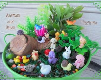 Set of 5  Fairy Garden Miniature Animals and Birds
