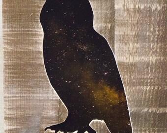 Stary Night Owl Cutout
