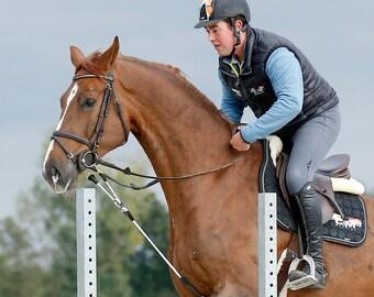 Reinrite Horse Training Aid