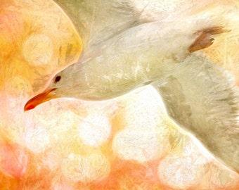 Impressionist Art, Nature Art, Pink and Orange Art, Sea Gull Print, Bird Art, Bird Decor, Pink and Gold Art, Seagull Print, Bird Painting