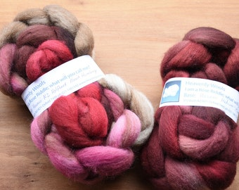 Hand dyed combed tops (roving)  for felting and spinning - 100gr Rose Riddle on multi bases