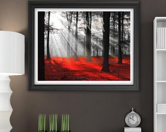Red and Black forest, Mystical and magical, worldwide dispatch A4 and 12 x 16 inch sizes