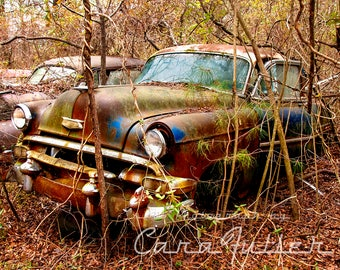1954 Chevy in the Woods Photograph