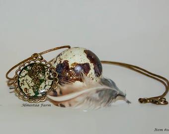 Quail Eggshell Necklace #106