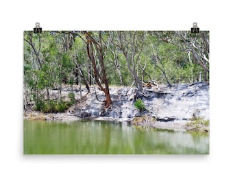 Green Pools, Australia, Australian coastal, Forest photography, Forest print, Nature photography, tree print, Northern rivers, river phot