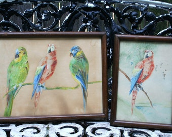 Lovely Pair of Watercolor Bird Pictures